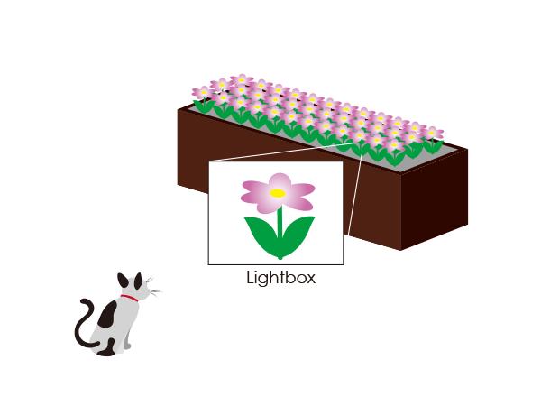 ライトボックス